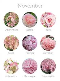 wedding flowers in october flowers for weddings in october best 25 october flowers ideas on