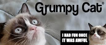 Grumpy Cat Meme I Had Fun Once - gund grumpy cat maison white