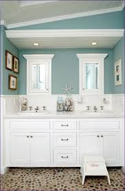 Jack And Jill Bathroom Layout Furniture Are Jack And Jill Bathrooms A Good Idea Electronic