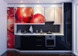 Red And Black Kitchen Cabinets by 101 Best Unique Kitchens Images On Pinterest Pictures Of