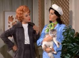 lucy arnaz today here s lucy lucy is n g as an r n cinema cats