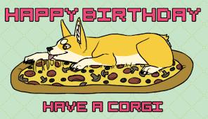 Corgi Birthday Meme - pizza dog gif by doktilar find download on gifer