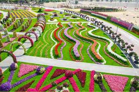 dubai miracle garden beautiful scene landscape stunning dream