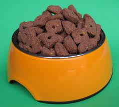 dino vite reviews dinovite reviews premium dog food or not price benefits health