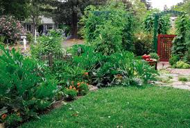 Permaculture Vegetable Garden Layout Permaculture Garden Design Landscape Ideas Permaculture Design Plans