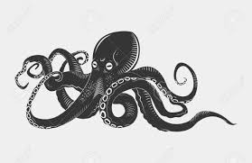 octopus stock photos royalty free octopus images and pictures