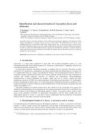 identification and characterization of aspergillus flavus and