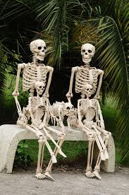 halloween skeletons decorations crazy bonez pose n stay family fun crazy bonez skeletons