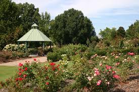 Garden Family Photography At The Ut Gardens