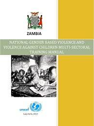 national gender based violence and violence against children multi