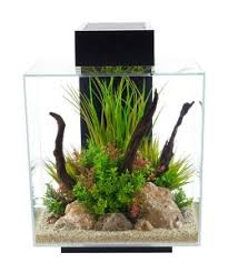 fluval edge aquarium 46l black the aquarium shop australia