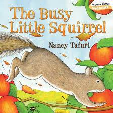 house of burke books about squirrels for preschoolers