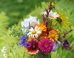 bright colorful bouquet of garden and wild natural flowers