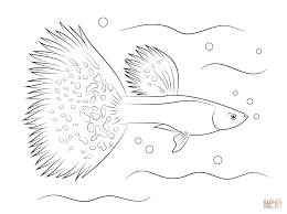 guppy coloring page free printable coloring pages