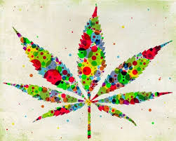 10 best hemp leaves images on pinterest hemp leaf buy cannabis