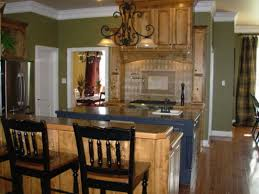 Olive Green Kitchen Cabinets  Image Of Green Kitchen Cabinets - Olive green kitchen cabinets
