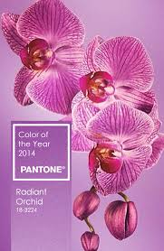 Pinterest Color Schemes by Warm Paint Colors Cozy Color Schemes Idolza