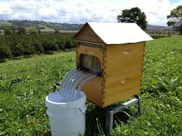 the flow hive