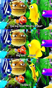 25 finding nemo meme ideas sponge bob quotes