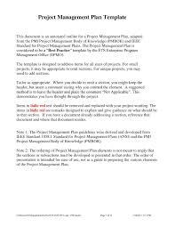 Plan Template Free Debt Management Plan Template And Debt Snowball Spreadsheet