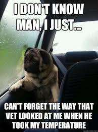 Dog At Vet Meme - 19 best veterinary humor images on pinterest funny stuff ha ha