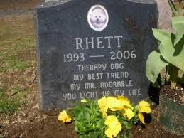 headstones for dogs memorial at hartsdale pet cemetery for rhett a therapy dog war