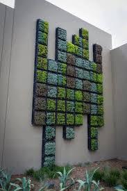 stunning green garden walls 17 best ideas about succulent wall