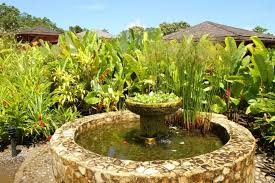 outdoor and patio beautifying the backyard garden by the