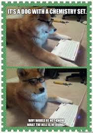 Chemistry Dog Meme - it s a dog with a chemistry set why would he not know what the
