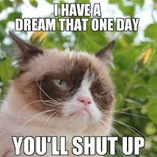 Grumpycat Memes - 20 of the funniest grumpy cat memes funny pictures pinterest