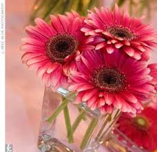 Daisy Centerpiece Ideas by The Knot Your Personal Wedding Planner Daisy Centerpieces