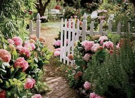 100 garden flower names list a list of perennial flowers dunneiv