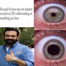 Billy Mays Meme - billy mays of memes oxi memes v420 instagram photos and videos