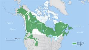 map of canada east coast map of east coast canada for alluring creatop me and world maps