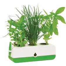 the green garden shop kitchen herb grower green gp0320