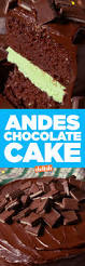 best 25 mint chocolate cakes ideas on pinterest mint cake mint