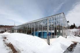 Backyard Greenhouse Winter Greenhouse In Winter Greenhouse Farming In An Home Diy Stuff New