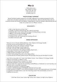 resume samples professional summary resume templates package handler professional summary