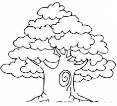 mango tree coloring pages for kids ty printable trees coloring