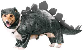 party city halloween costumes for dogs amazon com animal planet pet20105 stegosaurus dog costume large
