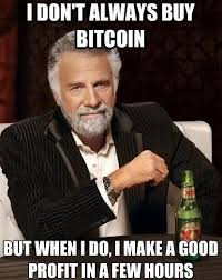 Bitcoin Meme - 54 best bitcoin memes images on pinterest cat memes comedy and
