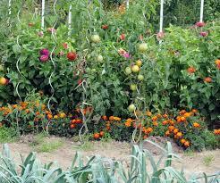 125 best garden layouts images on pinterest garden layouts