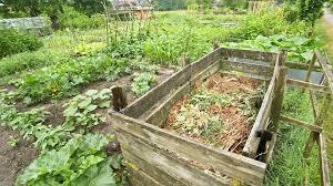 home composting do u0027s u0026 don u0027ts green living youtube