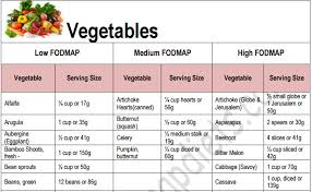 fod map journey into the low fodmap diet ibs recipes advice