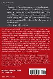 writing a theoretical paper the literary in theory cultural memory in the present jonathan the literary in theory cultural memory in the present jonathan culler 9780804753746 amazon com books