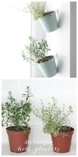 hanging herb planters indoor herb garden diy hanging planter