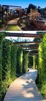 outdoor mushroom lights 2059 best g a r d e n images on pinterest banisters deko and garden