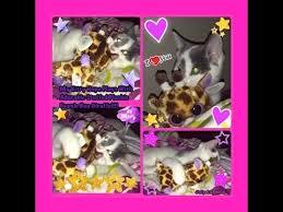kitty hope playing ty beanie boo giraffe plush july 14