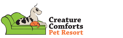 Creature Comforts Grooming Western Ny U0027s Best Dog And Cat Boarding Dog Daycare Luxury Pet