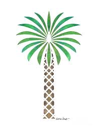 tribal canary date palm drawing by schaefer